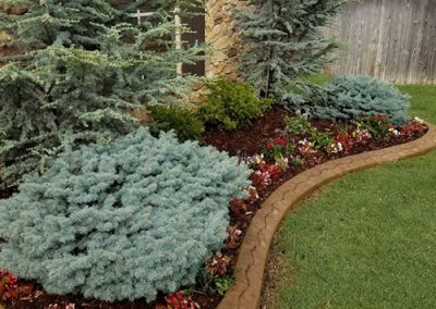 Lawn and Landscaping Services in OKC