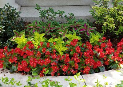 flower bed maintenance okc